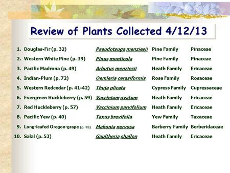 Review of Plants Collected 4/12/13 1.Douglas-Fir (p. 32) Pseudotsuga menziesiiPine FamilyPinaceae 2.Western White Pine (p. 39)Pinus monticolaPine FamilyPinaceae.