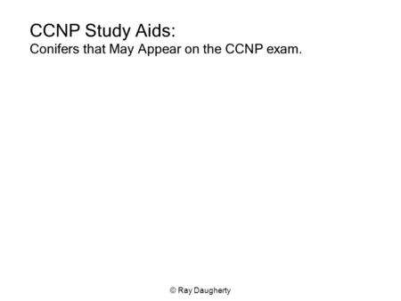 © Ray Daugherty CCNP Study Aids: Conifers that May Appear on the CCNP exam.