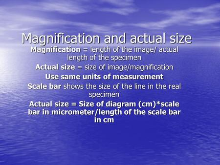 Magnification and actual size Magnification = length of the image/ actual length of the specimen Actual size = size of image/magnification Use same units.