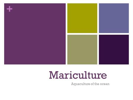 + Mariculture Aquaculture of the ocean. + Mariculture The farming of marine organisms.