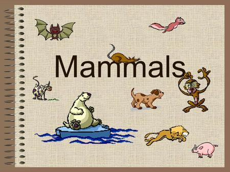 Mammals. Nervous System FACT#1: The brain of a mammal is 15 x heavier than the brain of a similarly sized fish, amphibian or reptile.