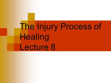 The Injury Process of Healing Lecture 8. Soft Tissue everything but bone - 3 phases Involves a complex series of interrelated physical and chemical activities.