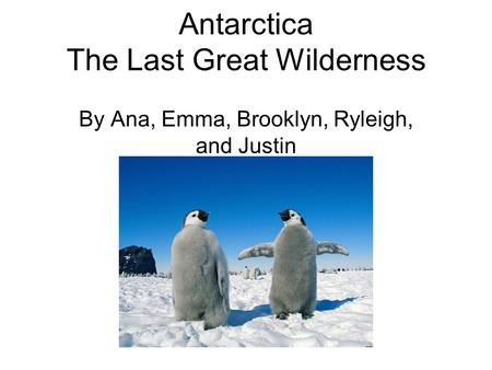Antarctica The Last Great Wilderness By Ana, Emma, Brooklyn, Ryleigh, and Justin.