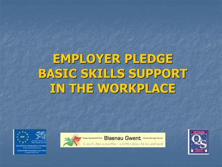 EMPLOYER PLEDGE BASIC SKILLS SUPPORT IN THE WORKPLACE.