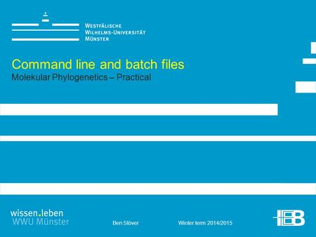 Ben Stöver Winter term 2014/2015 Command line and batch files Molekular Phylogenetics – Practical.