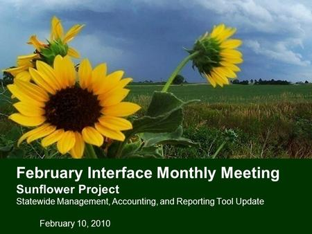 February Interface Monthly Meeting Sunflower Project Statewide Management, Accounting, and Reporting Tool Update February 10, 2010.