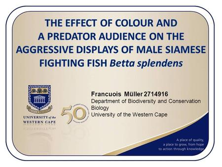 Francuois Müller 2714916 Department of Biodiversity and Conservation Biology University of the Western Cape.