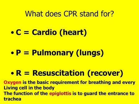 What does CPR stand for? C = Cardio (heart) P = Pulmonary (lungs) R = Resuscitation (recover) Oxygen is the basic requirement for breathing and every Living.