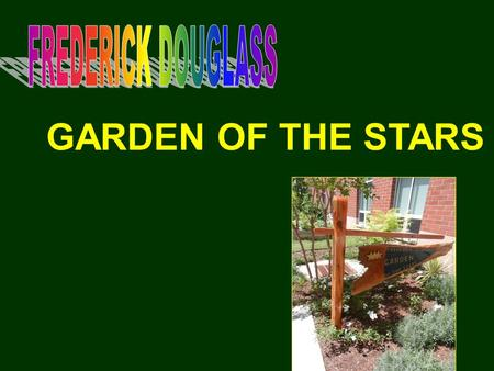 GARDEN OF THE STARS. SUMMER 2012 NOTHING?BUT… POSSIBILITIES OPPORTUNITY GREAT IDEAS INITIATIVE.