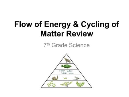 Flow of Energy & Cycling of Matter Review 7 th Grade Science.