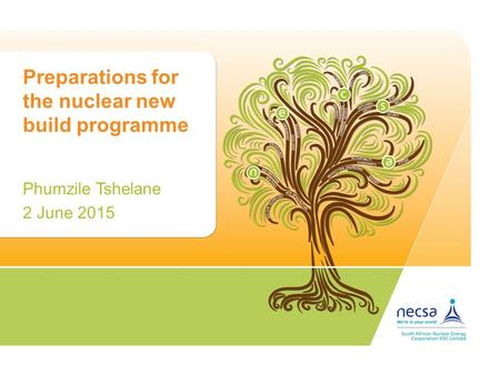 Preparations for the nuclear new build programme Phumzile Tshelane 2 June 2015.