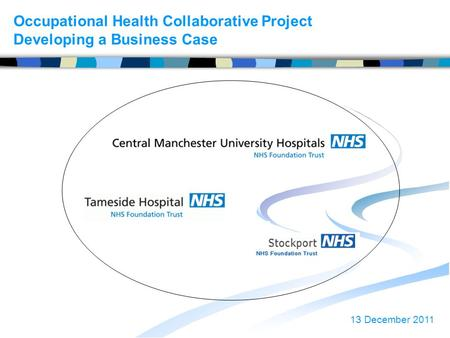 Occupational Health Collaborative Project Developing a Business Case 13 December 2011.
