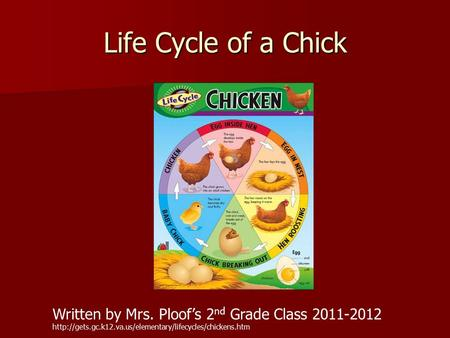Life Cycle of a Chick Written by Mrs. Ploof's 2 nd Grade Class 2011-2012