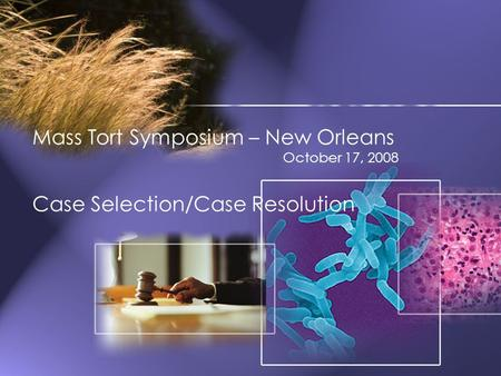 Mass Tort Symposium – New Orleans October 17, 2008 Case Selection/Case Resolution.