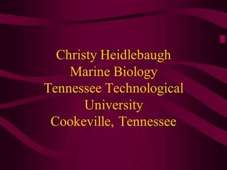 Christy Heidlebaugh Marine Biology Tennessee Technological University Cookeville, Tennessee.