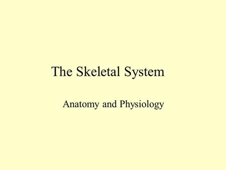 The Skeletal System Anatomy and Physiology Bone A connective tissue Contains bone tissue, cartilage, fibrous connective tissue, blood, and nervous tissue.