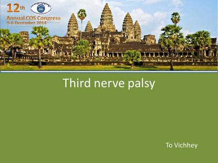 Third nerve palsy To Vichhey. Outline Review anatomy Introduction Physiopathology Symptom and sign Etiology Differential diagnosis Work up Treatment.