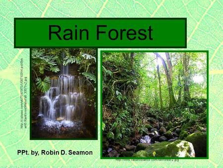 PPt. by, Robin D. Seamon  Rain Forest  wH5.RainforestWaterfall_33571v2.jpg.