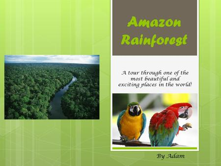 Amazon Rainforest By Adam A tour through one of the most beautiful and exciting places in the world!