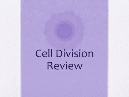 Cell Division Review. What the four major stages of the cell cycle? Which stages make up interphase?