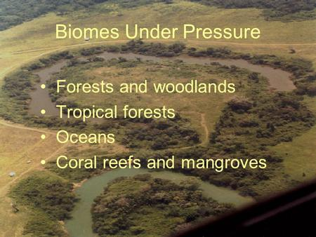 Biomes Under Pressure Forests and woodlands Tropical forests Oceans