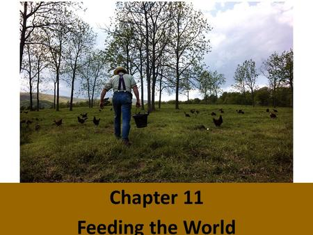 Chapter 11 Feeding the World. Food Production Major food sources: croplands, rangelands, and oceans Large increase in food production since 1950 Need.