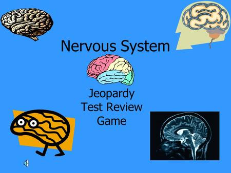 Nervous System Jeopardy Test Review Game. EvolutionNervous System EyeEarMisc. 100 200 300 400 500.