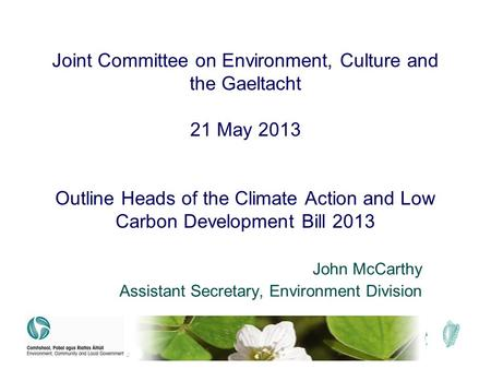 Joint Committee on Environment, Culture and the Gaeltacht 21 May 2013 Outline Heads of the Climate Action and Low Carbon Development Bill 2013 John McCarthy.