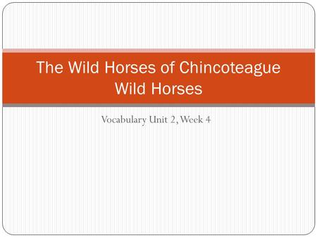 Vocabulary Unit 2, Week 4 The Wild Horses of Chincoteague Wild Horses.