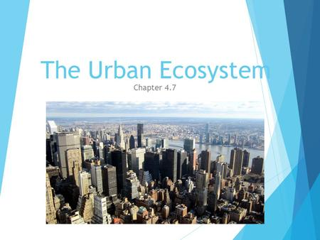 The Urban Ecosystem Chapter 4.7. Cities  Cities cause a lot of air and water pollution  Air pollutions comes from car exhaust, burning fuels, and gases.