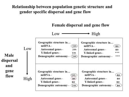 Female dispersal and gene flow Low High Male dispersal and gene flow Low High Geographic structure in… mtDNA-- yes Autosomal genes-- yes Y-linked genes--