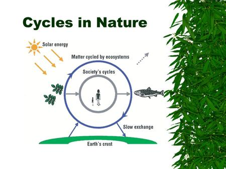Cycles in Nature.  Where matter is recycled but never replenished. –It is never lost.  Sunlight= primary source of energy.