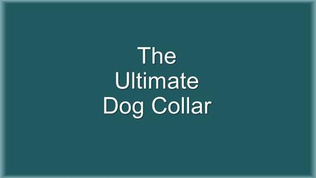 The Ultimate Dog Collar. The Team Faculty Advisor Dr. Patrick Donohoe Daniel Stevenson (Electrical Engineering) Kaytan Mills (Electrical Engineering)