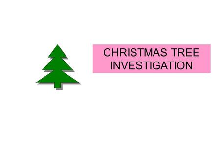 CHRISTMAS TREE INVESTIGATION. YOUR CHALLENGE IS TO INVESTIGATE THE NUMBER OF RED LIGHTS THE NUMBER OF WHITE LIGHTS AND THE TOTAL NUMBER OF LIGHTS ON CHRISTMAS.