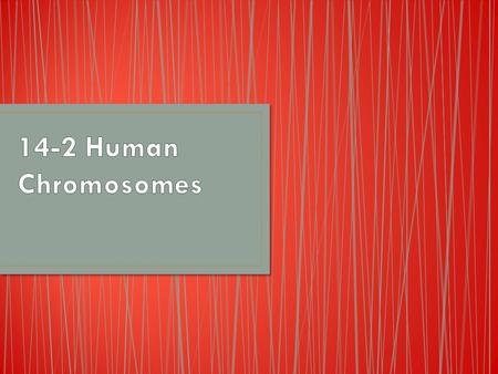 Genes that are located close together on the same chromosome are linked Those genes may be inherited together The total human genome (all of the different.