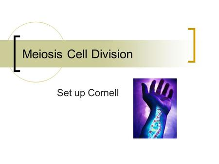 Meiosis Cell Division Set up Cornell. A. What is Meiosis? All organisms that reproduce sexually undergo meiosis. Meiosis is cell division of sex cells.