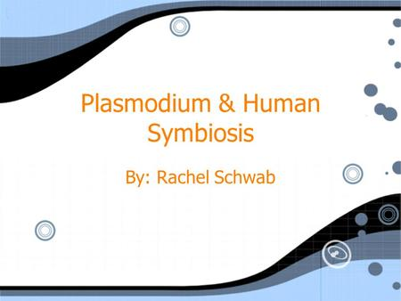 Plasmodium & Human Symbiosis By: Rachel Schwab. Evasive Parasite Plasmodium hide in the human liver and in blood cells They hide from the immune system.