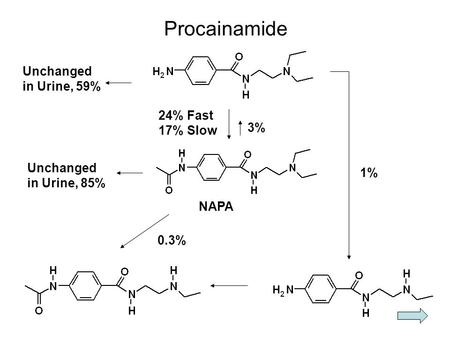 Procainamide Unchanged in Urine, 59% 3% 24% Fast 17% Slow Unchanged in Urine, 85% NAPA 0.3% 1%