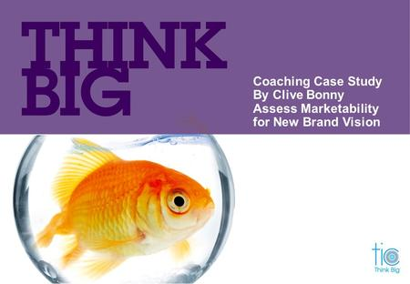 Coaching Case Study By Clive Bonny Assess Marketability for New Brand Vision.
