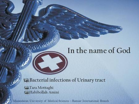 In the name of God Tara Mottaghi Habibollah Amini Bacterial infections of Urinary tract Mazandaran University of Medical Sciences – Ramsar International.