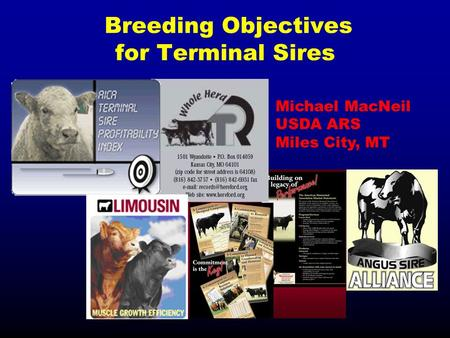 Breeding Objectives for Terminal Sires Michael MacNeil USDA ARS Miles City, MT.