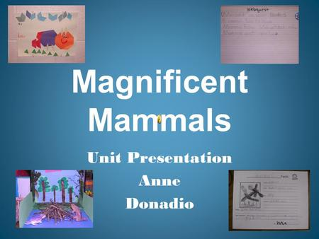 Magnificent Mammals Unit Presentation Anne Donadio.