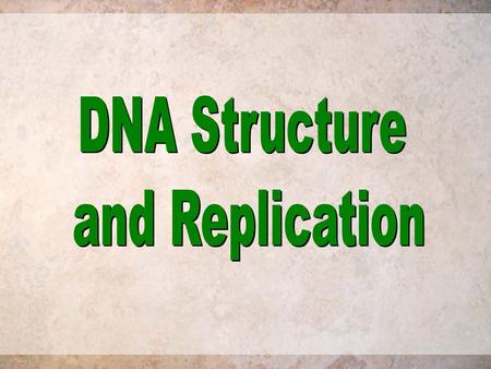 DNA Structure and Replication.