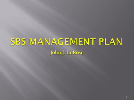 John J. LeRose 1.  Roles/Responsibilities/Organization  Approach  Goals and Objectives  Scope  Schedule  Funding profile  Risk management  EH&S.