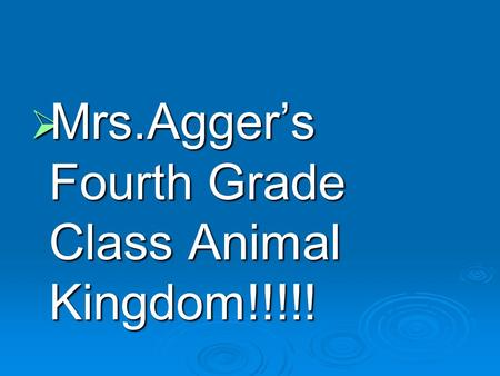  Mrs.Agger's Fourth Grade Class Animal Kingdom!!!!!