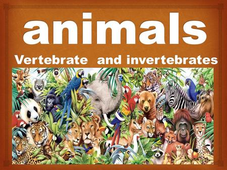Vertebrate and invertebrates.  There are more than two million different kinds of animals in the world.