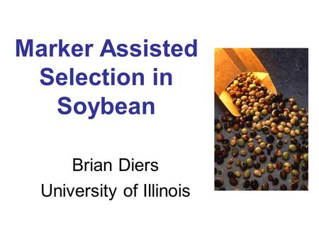 Marker Assisted Selection in Soybean Brian Diers University of Illinois.