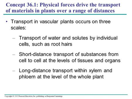Copyright © 2005 Pearson Education, Inc. publishing as Benjamin Cummings Concept 36.1: Physical forces drive the transport of materials in plants over.