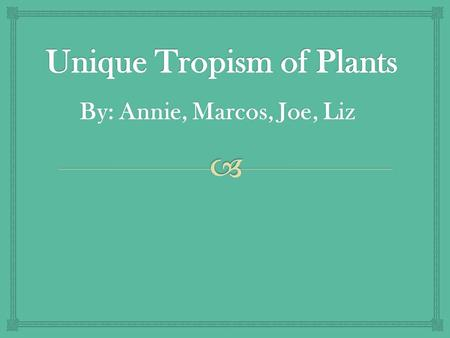 By: Annie, Marcos, Joe, Liz.   Tropism in plants are a growth or movement in response to a direct stimulu s What is Tropism in Plants ?