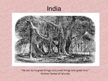 "India ""We can do no great things; only small things with great love."" -Mother Teresa of Calcutta."
